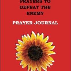 21-prayer-journal